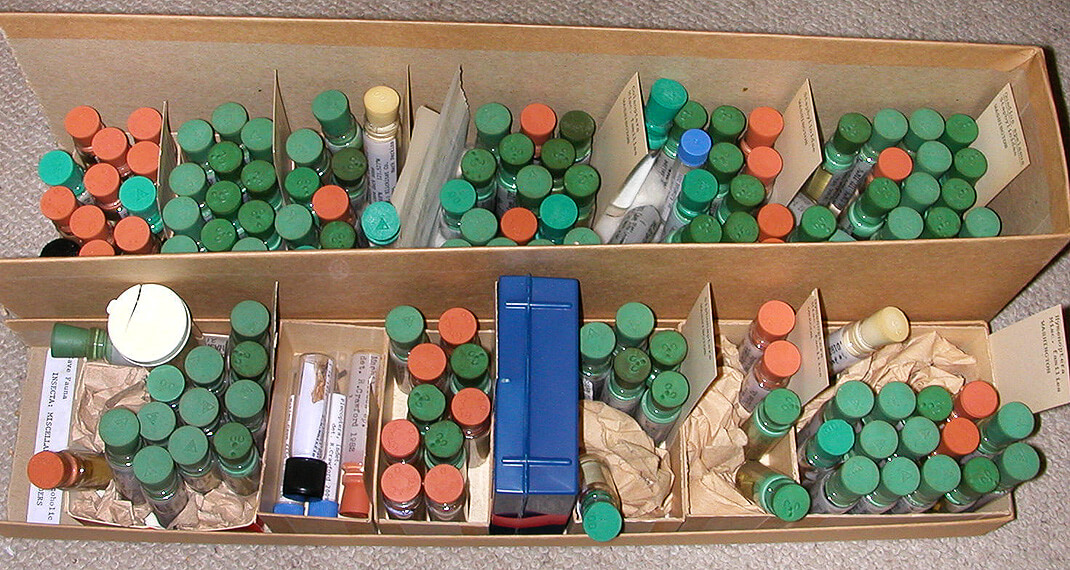 many small vials of specimens
