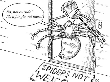 "cartoon drawing of a spider holding back at a doorway with words ""no, not outside! It's a jungle out there!"""