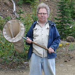 a man stands in the forest holding a bug catching net