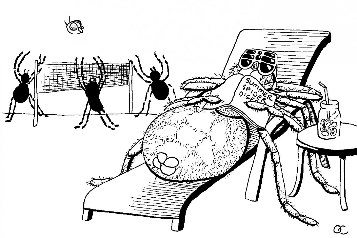 a comic showing a spider lounging in the sun with sunglasses on