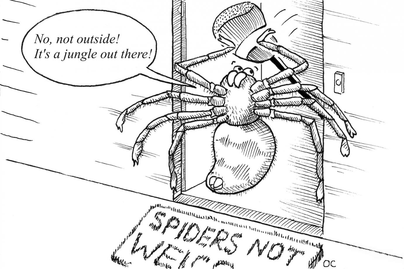 A comic of a spider banging on a front door