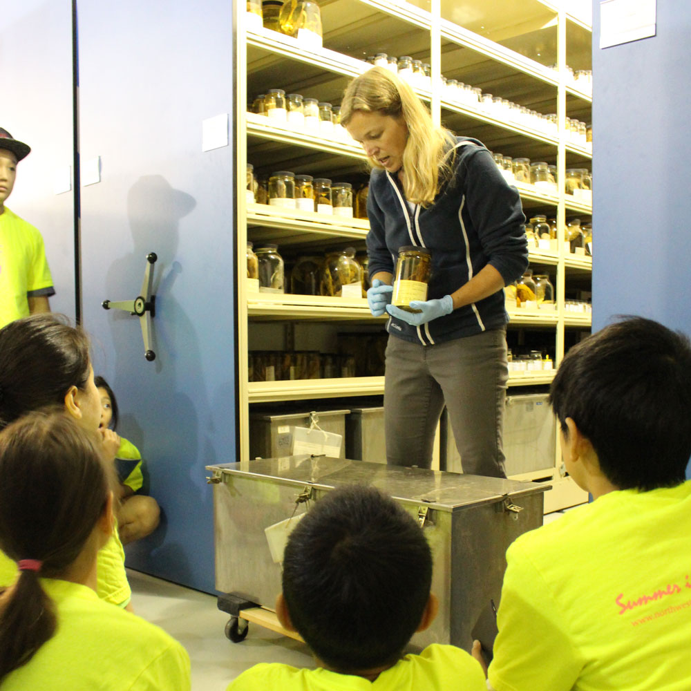 a woman gives a tour of the fish collection to a group of middle school campers