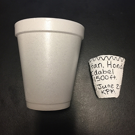 Two styrofoam cups, one normal size and one shrunken