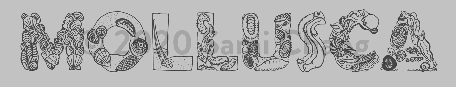 MOLLUSCA sketch, with each letter illustrating a group of mollusks