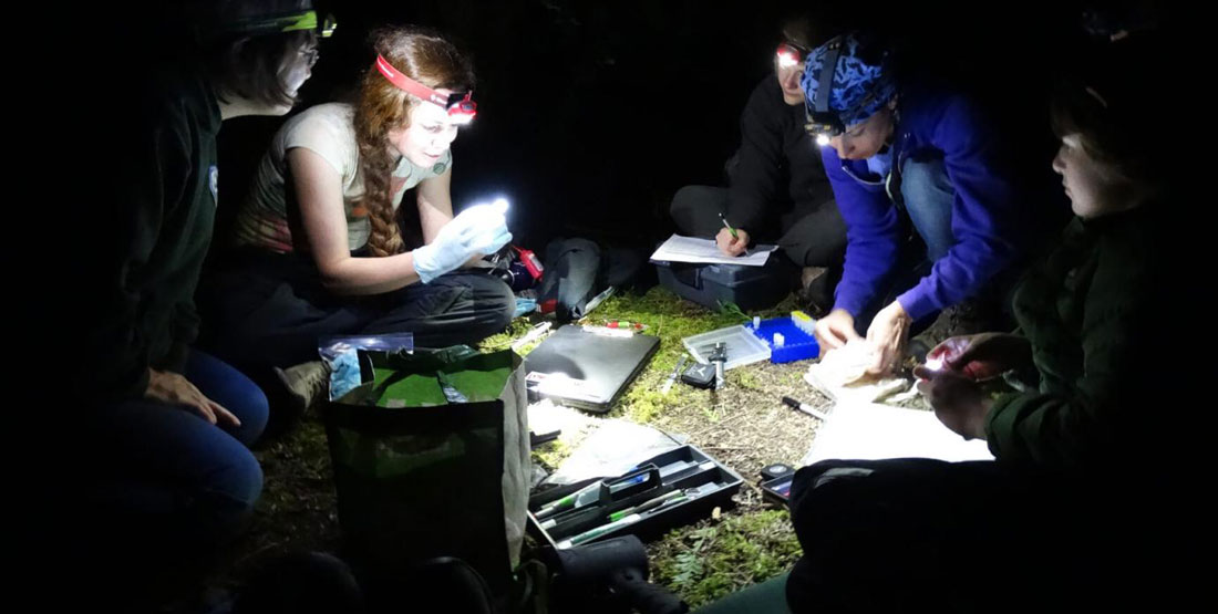A group of researchers sitting in a circle surrounded by their tools at night