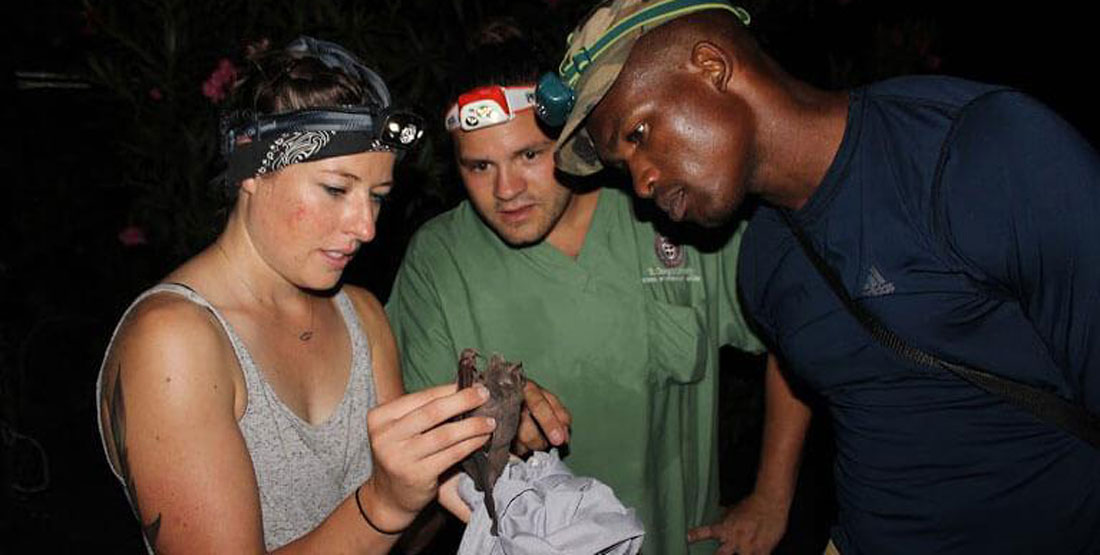 One female researcher holds a bat while two male researchers look on