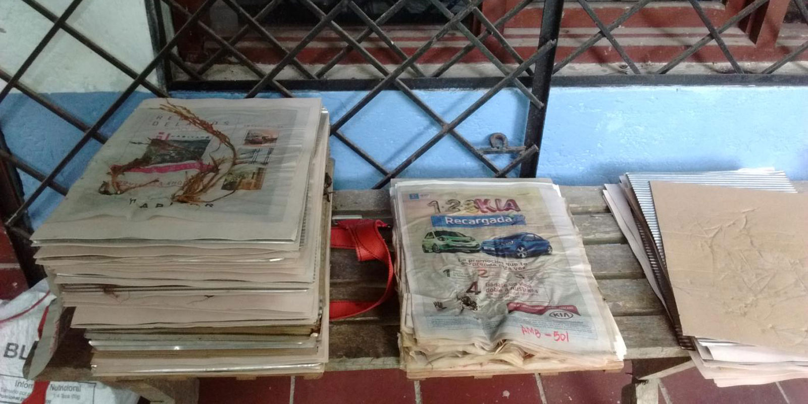 Two piles of newspaper with pressed plants in between the pages