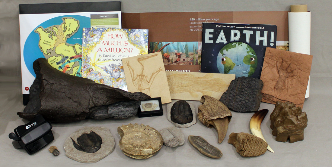 contents of the geologic time box