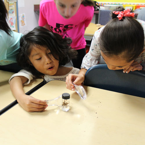 children look at object with a magnifying glass