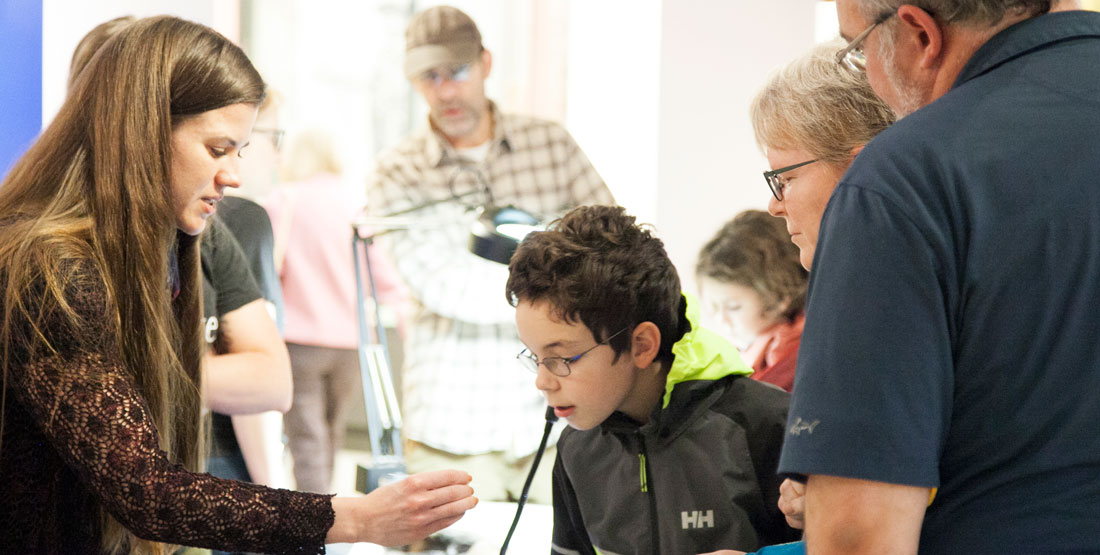 visitors looking at a specimen
