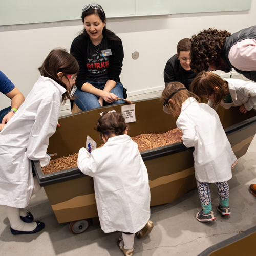 a group of kids dig in the dig pit while wearing lab coast