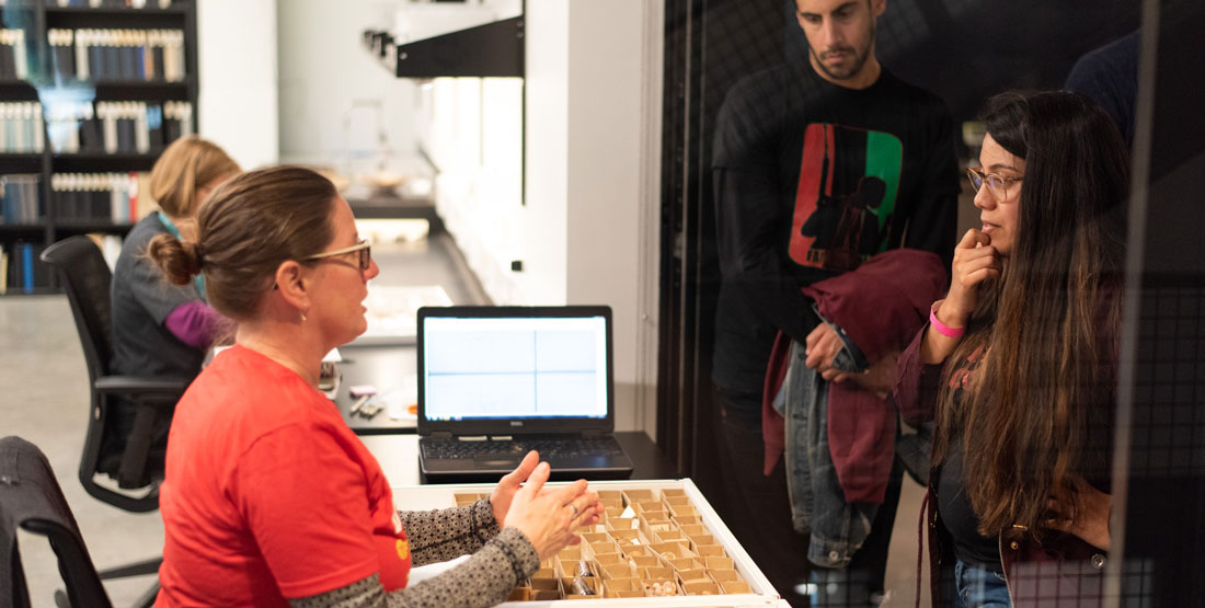 a researcher talks to two visitors while organizing shell collections