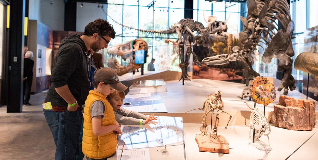a family looks at fossils with dinosaur skeletons in the background