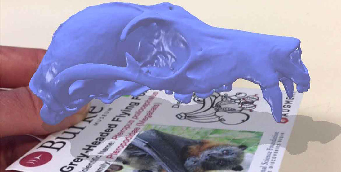 A purple virtual bat skull scan appears over the top of a card describing its species information