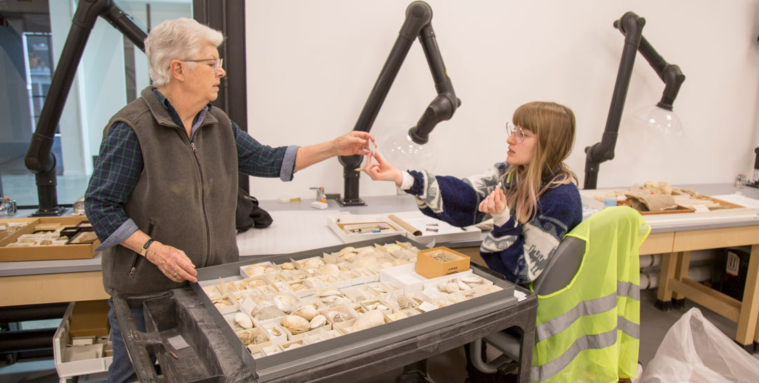 an older woman hands a fossil to a younger woman as they sort fossil shells