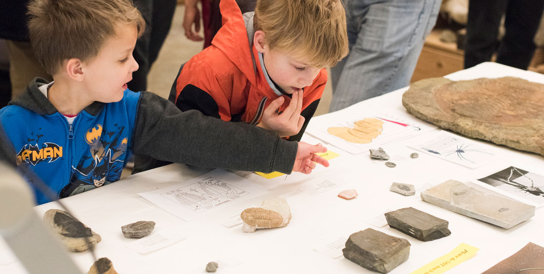 two young boys look at invertebrate fossils