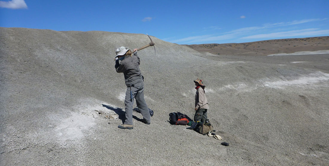 two women working on a hillside in a desert, one is raising a pick axe over her head and the other is digging