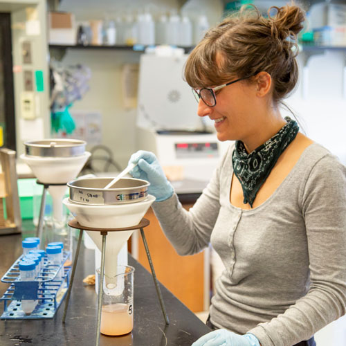 a young woman cleans sediment to collect microfossils
