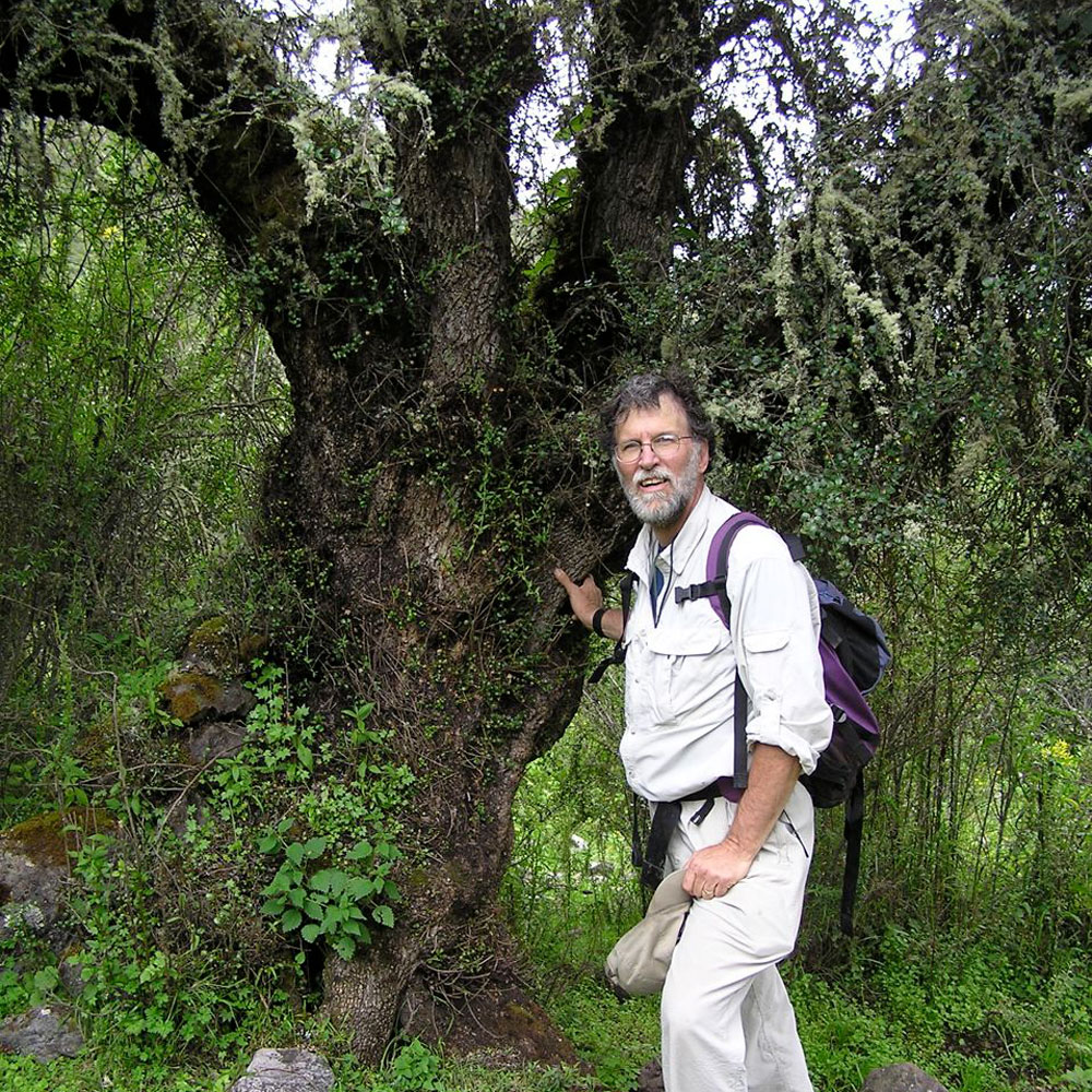 A male researcher stands next to a tree