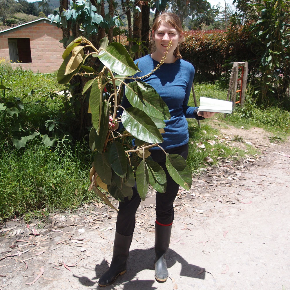 A woman researcher stands outside holding a branch with leaves and fruit