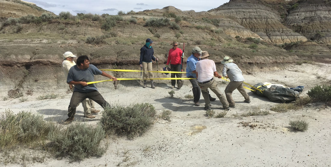 a group of men drag a heavy fossil contained in its field jacket across the dry desert floor in Montana