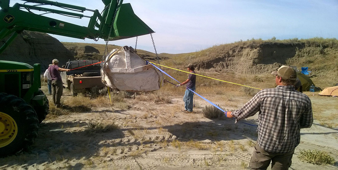 The skull jacket is lifted by a tractor as paleontologists use ropes to help guide it to a flatbed truck