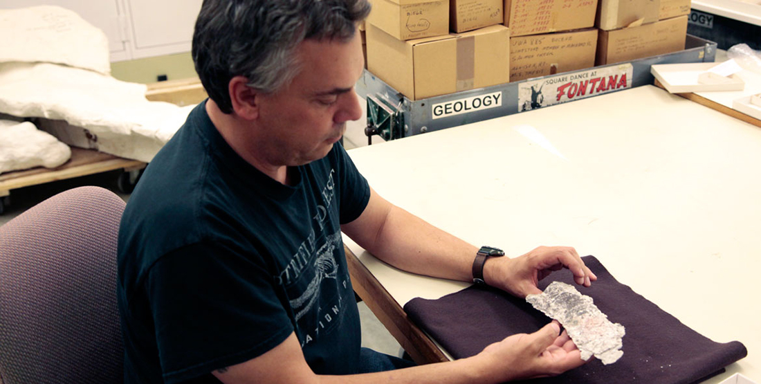 A man holds a fragile fossil in the Burke collections space