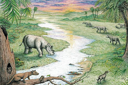 An illustration of a lush green habitat with a river and animals drinking from the river