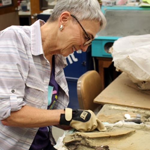 A woman scrapes away sandstone from the T. rex fossil
