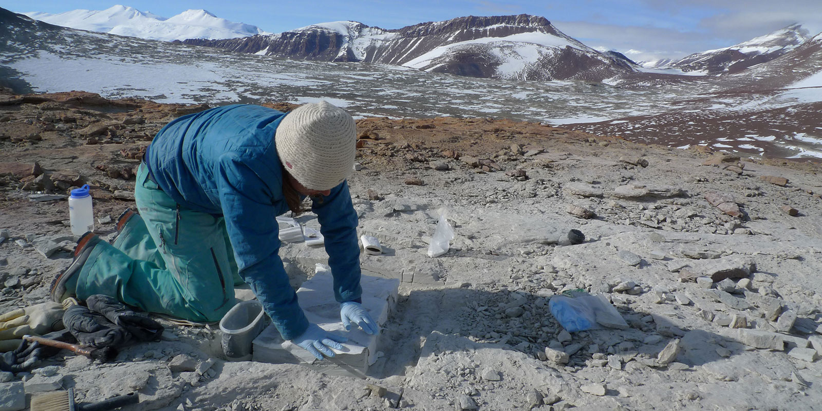 a young woman kneels on the rock while applying plaster a fossil in antarctica
