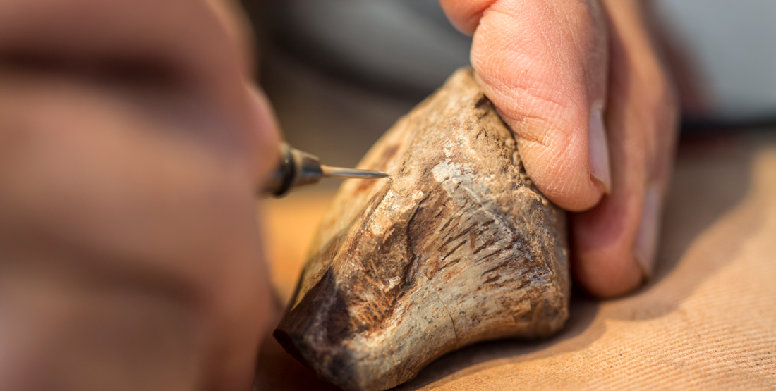 close up of hands holding a miniature jackhammer to remove rock from a small fossil bone