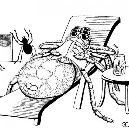 a cartoon of a spider laying on a lounge chair with sunglasses