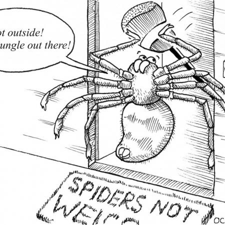 A comic showing a spider banging on a door