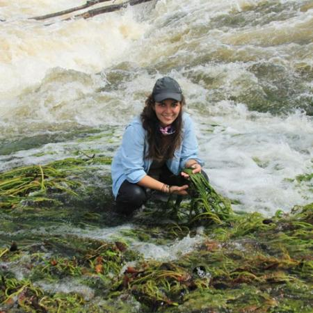A woman researcher sits in the river holding green river weed