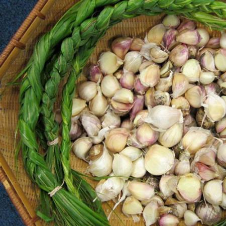 close up of wild onions and garlic in a basket