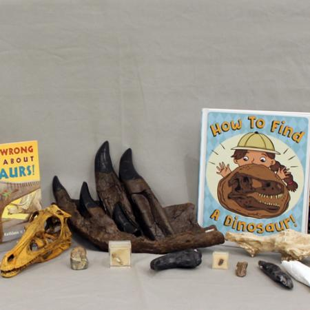 contents of dinosaur box
