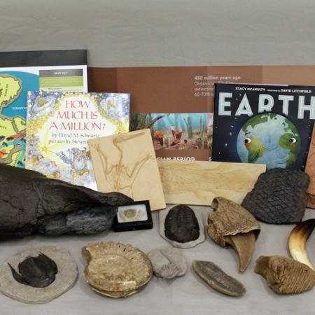 contents of geologic burke box