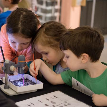 children look at fossils through a microscope