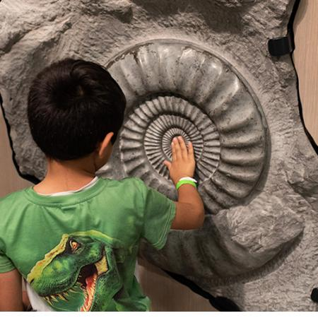 boy with fossil