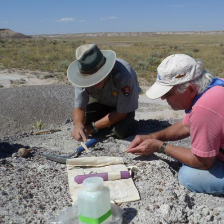 Two men kneel on a rock outcrop and use small tools to remove rock and dirt away from fossils in the ground