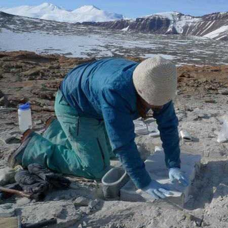 a young woman kneels while applying plaster to a fossil in Antarctica