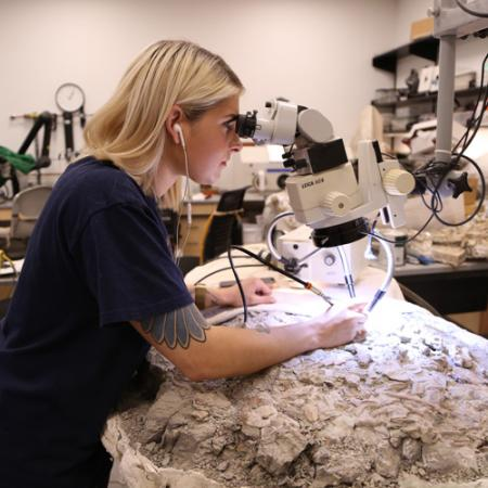 a woman uses a microscope to prepare a large fossil