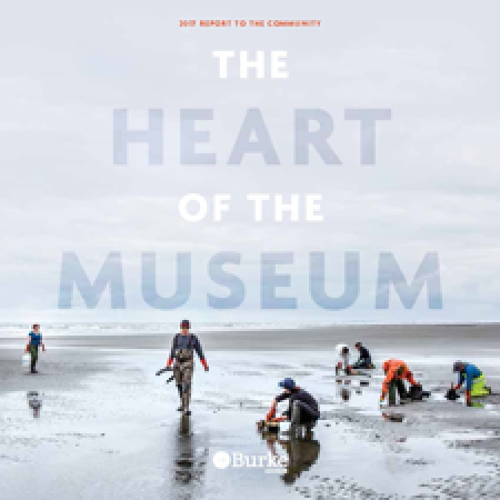 "2017 annual report cover with title ""The Heart of the Museum"""