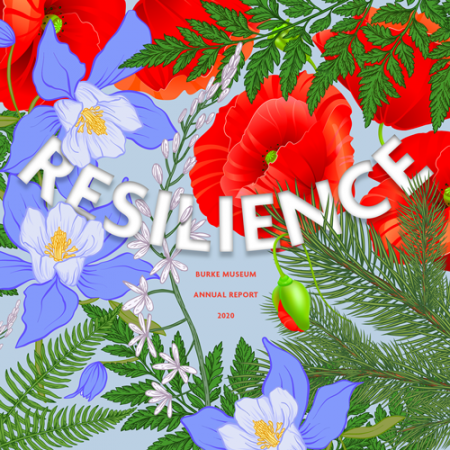 resilience burke museum annual report 2020 on a background of colorful flowers